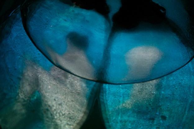 Útero / Garrafa de cristal, agua, lana roja, media, miniproyector. Medidas variables, 2'09''
