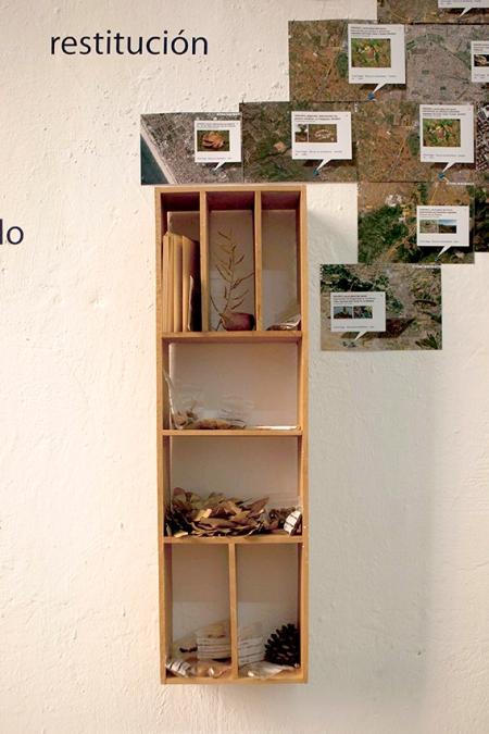 echando-raices_instalacion_semillas-madera-vinilo-e-impresiones-digitales_medidas-variables_2013_detalle