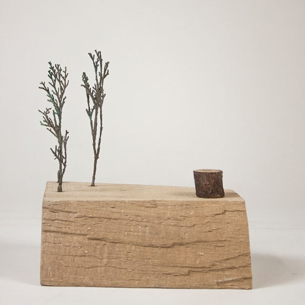 serie-paisajes-habitados_memorias-iii_madera-y-bronce_16x14x10-cm_2013