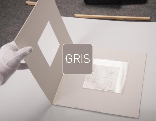 gris dins 3 copia